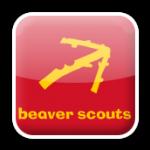 BeaverIcon
